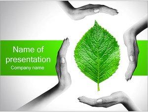 Шаблон презентации PowerPoint: Руки с зеленым листом
