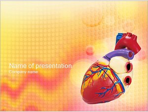 Шаблон презентации PowerPoint: Модель человеческого сердца