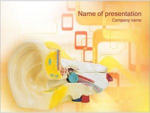 Шаблон презентации PowerPoint: Медицинская модель уха