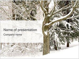 Шаблон презентации PowerPoint: Деревья зимой
