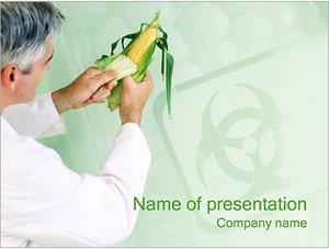 Шаблон презентации PowerPoint: Экологически чистая кукуруза