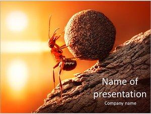 Шаблон презентации PowerPoint: Муравей поднимает тяжесть в гору
