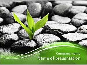 Шаблон презентации PowerPoint: Росток пробивается через камни