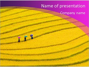 Шаблон презентации PowerPoint: Желтое поле
