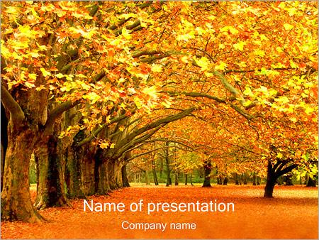 Шаблон презентации Осень в парке - Титульный слайд