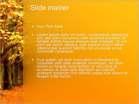Шаблон PowerPoint Осень в парке - Второй слайд