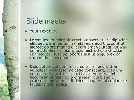 Шаблон PowerPoint Березы - Второй слайд