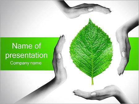 Шаблон презентации Руки с зеленым листом - Титульный слайд