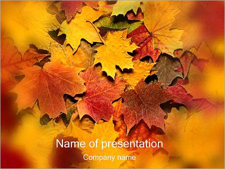 Шаблон презентации Осень - Титульный слайд