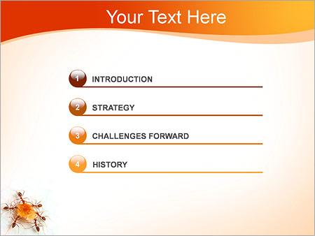 Шаблон для презентации Муравьи с сахаром - Третий слайд