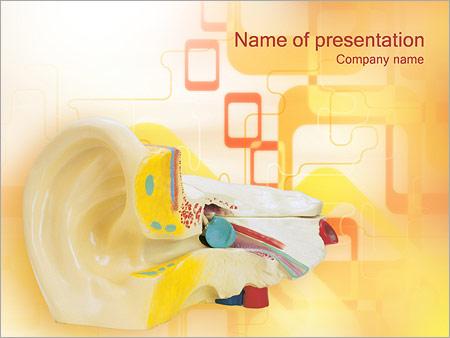 Шаблон презентации Медицинская модель уха - Титульный слайд