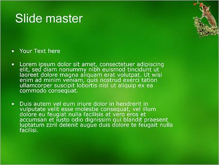 Шаблон PowerPoint Мышь - Второй слайд