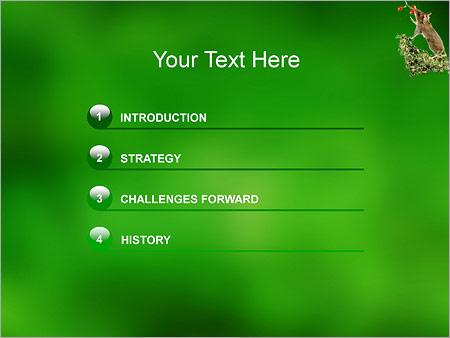 Шаблон для презентации Мышь - Третий слайд
