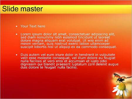 Шаблон PowerPoint Божья коровка на ромашке - Второй слайд