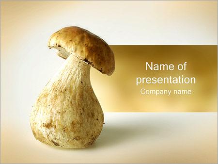 Шаблон презентации Гриб - Титульный слайд