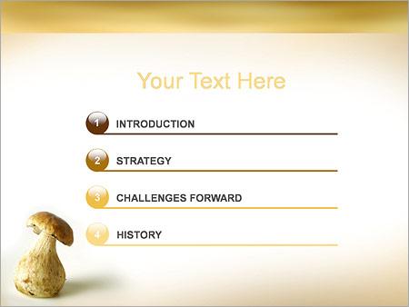 Шаблон для презентации Гриб - Третий слайд