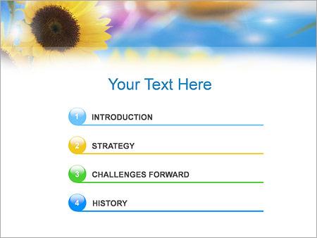 Шаблон для презентации Счастливая женщина - Третий слайд