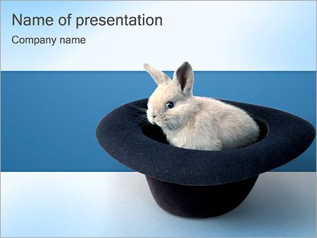 Шаблон презентации Кролик в шляпе - Титульный слайд