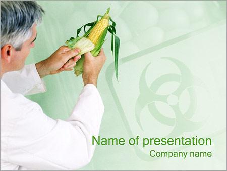 Шаблон презентации Экологически чистая кукуруза - Титульный слайд