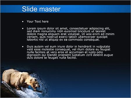Шаблон PowerPoint Медведь - Второй слайд