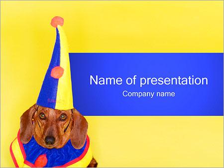 Шаблон презентации День рождения собаки - Титульный слайд