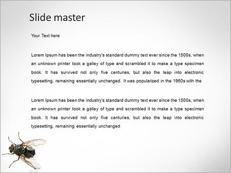Шаблон PowerPoint Муха - Второй слайд