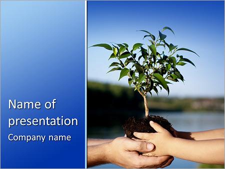 Шаблон презентации Дерево саженец в руках - Титульный слайд