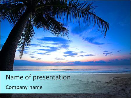 Шаблон презентации Тропический закат с пальмой - Титульный слайд