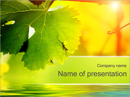 Шаблон презентации Осенние листья - Титульный слайд