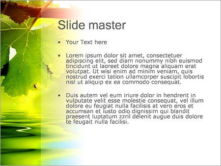 Шаблон PowerPoint Осенние листья - Второй слайд